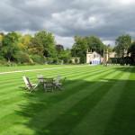 Rady a tipy pro výběr trávníkového hnojiva
