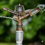 Trávník a voda – voda je život