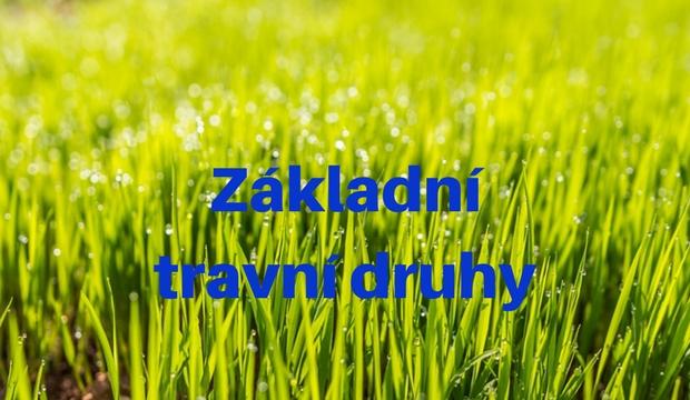 Nejčastěji využívané travní druhy do trávníků