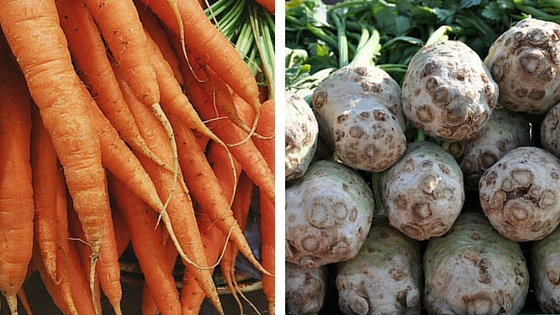 Pěstujeme kořenovou zeleninu – celer a mrkev