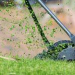 Jak správně sekat okrasný trávník