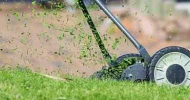 sečení trávníku