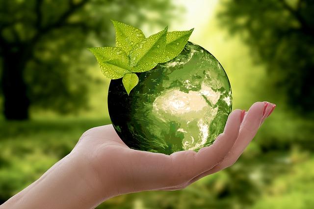 Zero waste – co to je a jak to funguje
