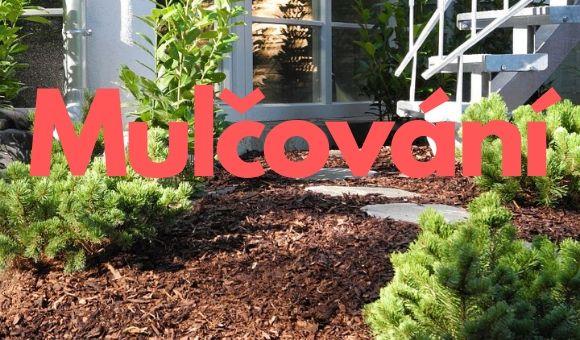 Mulčování ‒ prospěje okrasné i užitkové zahradě